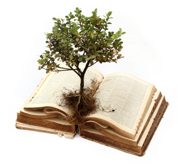 Tree in book